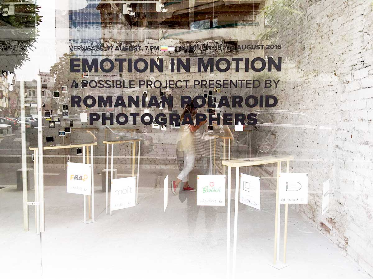 Emotion in Motion. Expoziție de fotografie Polaroid