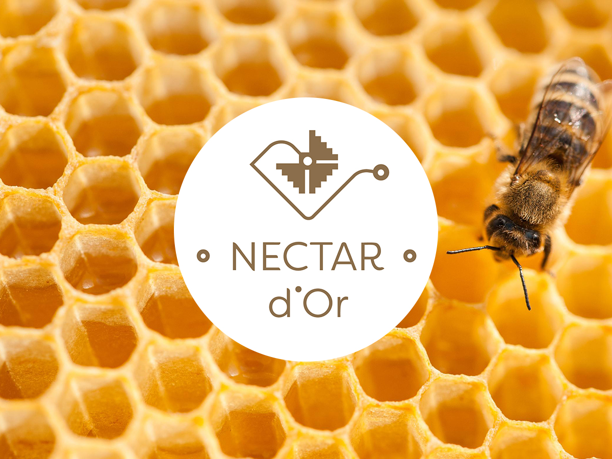 Nectar d'Or – Producător de miere